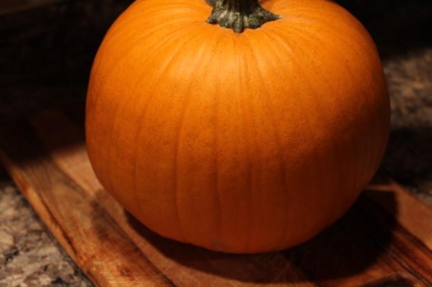 pumpkinseeds1