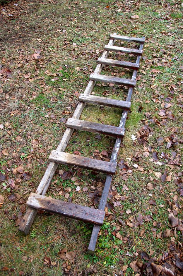 ladder9